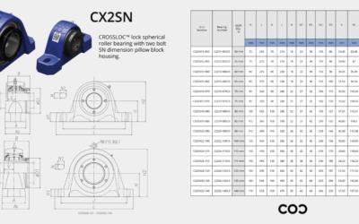 CX2SN Chart